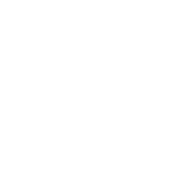 Fall Prevention and Tai Chi